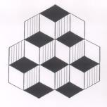 cube_illusion